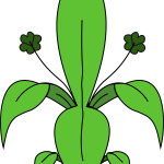 LogoVTrave